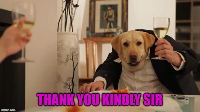 THANK YOU KINDLY SIR | made w/ Imgflip meme maker