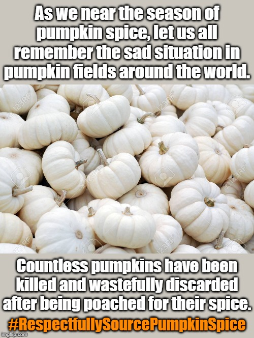 #RespectfullySourcePumpkinSpice | As we near the season of pumpkin spice, let us all remember the sad situation in pumpkin fields around the world. Countless pumpkins have be | image tagged in pumpkin spice,pumpkin,sad but true,petition | made w/ Imgflip meme maker
