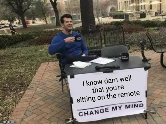 Get up |  I know darn well that you're sitting on the remote | image tagged in memes,change my mind | made w/ Imgflip meme maker