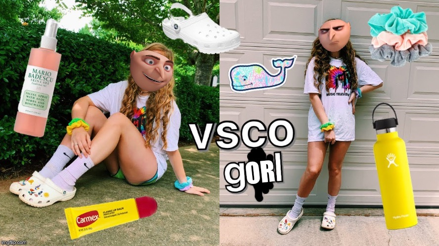 Vsco Gorl |  OR | image tagged in vsco,girl,gru,gorl | made w/ Imgflip meme maker