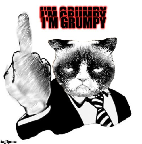 Needless to say | image tagged in grumpy cat,1950s middle finger,44colt | made w/ Imgflip meme maker