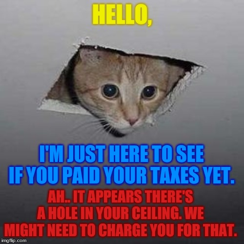 Recognize this?? if you do...you've been following me for the last two years? wtf | HELLO, I'M JUST HERE TO SEE IF YOU PAID YOUR TAXES YET. AH.. IT APPEARS THERE'S A HOLE IN YOUR CEILING. WE MIGHT NEED TO CHARGE YOU FOR THAT | image tagged in memes,ceiling cat,taxes | made w/ Imgflip meme maker