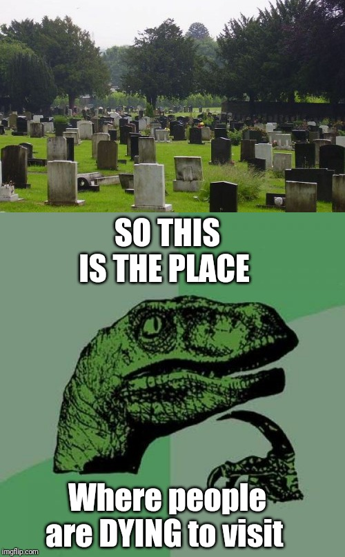 Philosoraptor |  SO THIS IS THE PLACE; Where people are DYING to visit | image tagged in memes,philosoraptor,graveyard | made w/ Imgflip meme maker