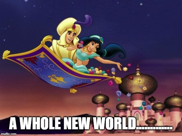 Aladdin flying carpet ride | A WHOLE NEW WORLD............. | image tagged in aladdin flying carpet ride | made w/ Imgflip meme maker