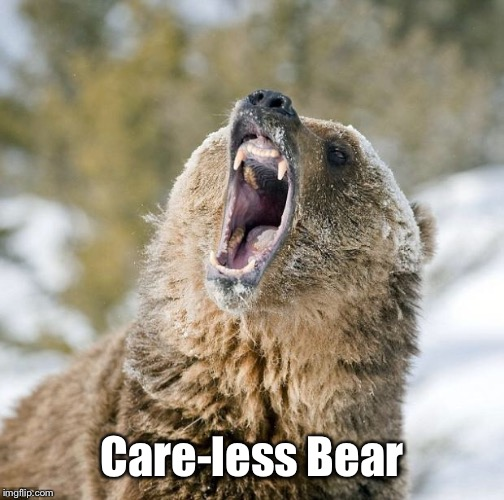 Grizzly Bear | Care-less Bear | image tagged in grizzly bear | made w/ Imgflip meme maker