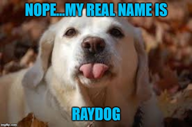 NOPE...MY REAL NAME IS RAYDOG | made w/ Imgflip meme maker