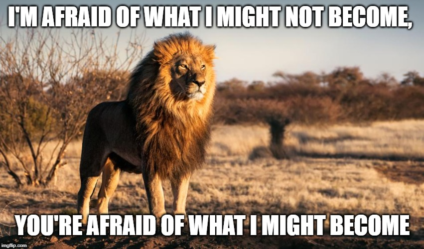 I'M AFRAID OF WHAT I MIGHT NOT BECOME, YOU'RE AFRAID OF WHAT I MIGHT BECOME | image tagged in inspirational quote,inspirational,inspiration,fear,lion,no fear | made w/ Imgflip meme maker