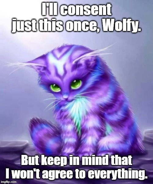 Storm Agrees | I'll consent just this once, Wolfy. But keep in mind that I won't agree to everything. | image tagged in memes,cats,adorable | made w/ Imgflip meme maker