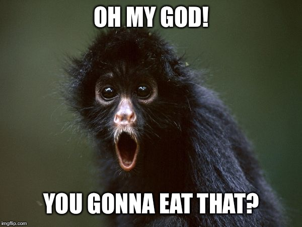 ooooh | OH MY GOD! YOU GONNA EAT THAT? | image tagged in ooooh | made w/ Imgflip meme maker