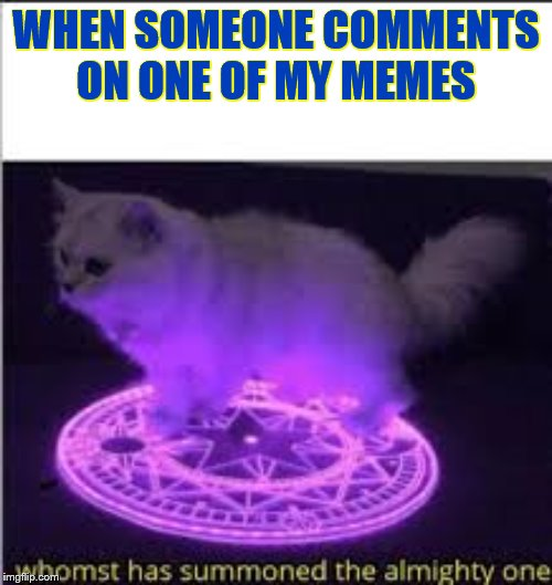 Whomst has summoned the almighty one |  WHEN SOMEONE COMMENTS ON ONE OF MY MEMES | image tagged in cat,ritual | made w/ Imgflip meme maker
