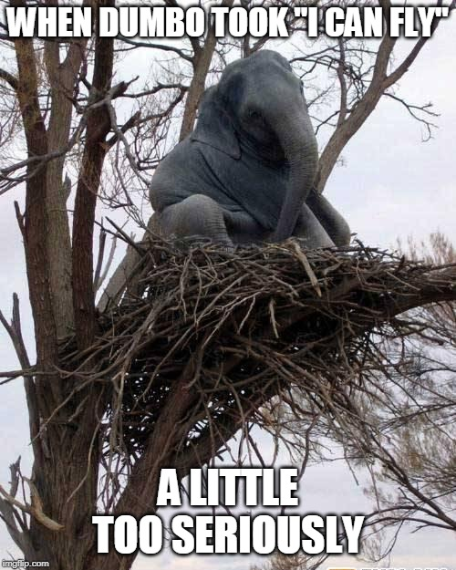 "DUMBO CAN NEST |  WHEN DUMBO TOOK ""I CAN FLY""; A LITTLE TOO SERIOUSLY 