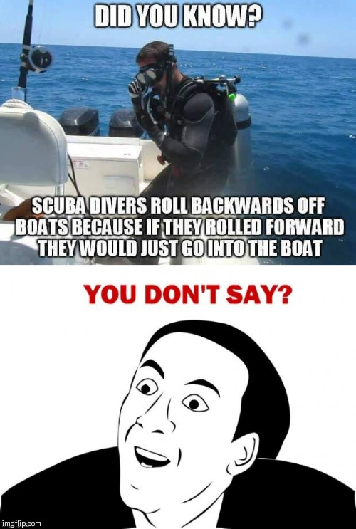 Never thought of it like that | Z | image tagged in you don't say,scuba diving,water | made w/ Imgflip meme maker