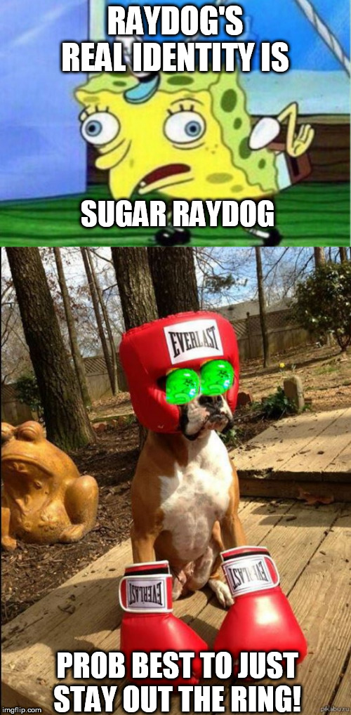 RAYDOG'S REAL IDENTITY IS SUGAR RAYDOG PROB BEST TO JUST STAY OUT THE RING! | image tagged in memes,mocking spongebob | made w/ Imgflip meme maker
