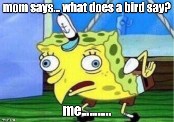 Mocking Spongebob Meme | mom says... what does a bird say? me........... | image tagged in memes,mocking spongebob | made w/ Imgflip meme maker