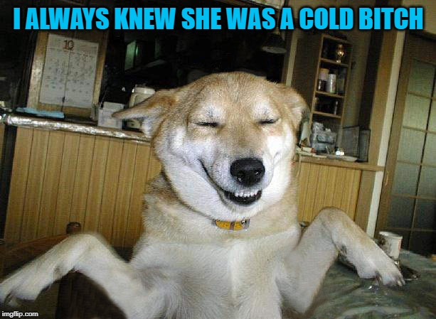 I ALWAYS KNEW SHE WAS A COLD B**CH | made w/ Imgflip meme maker