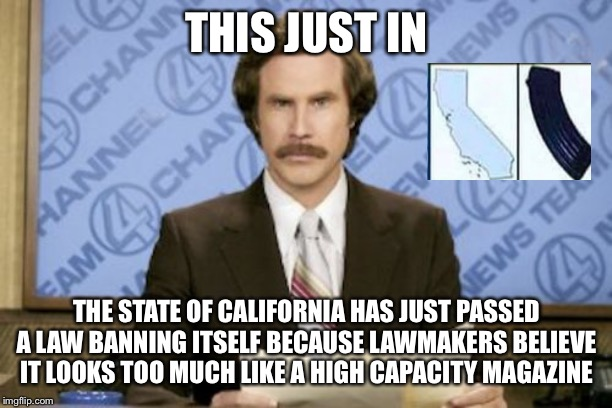 Ron Burgundy | THIS JUST IN THE STATE OF CALIFORNIA HAS JUST PASSED A LAW BANNING ITSELF BECAUSE LAWMAKERS BELIEVE IT LOOKS TOO MUCH LIKE A HIGH CAPACITY M | image tagged in memes,ron burgundy | made w/ Imgflip meme maker