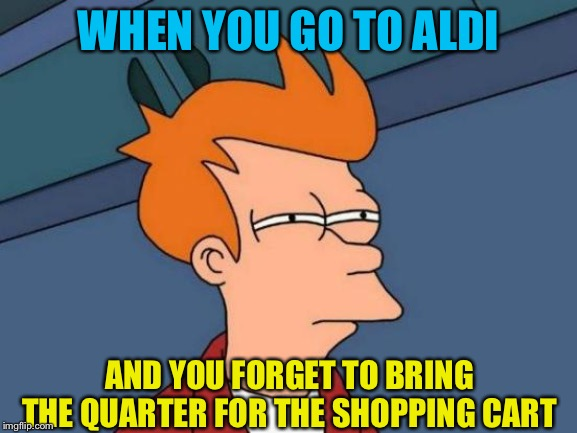 Remember that quarter! | WHEN YOU GO TO ALDI AND YOU FORGET TO BRING THE QUARTER FOR THE SHOPPING CART | image tagged in memes,futurama fry | made w/ Imgflip meme maker