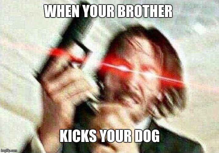 my brother is abusive | WHEN YOUR BROTHER KICKS YOUR DOG | image tagged in john wick,animal abuse,brother,dog | made w/ Imgflip meme maker
