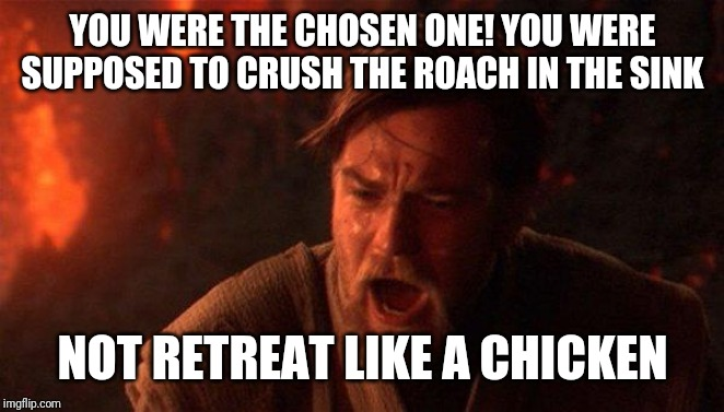 You Were The Chosen One (Star Wars) |  YOU WERE THE CHOSEN ONE! YOU WERE SUPPOSED TO CRUSH THE ROACH IN THE SINK; NOT RETREAT LIKE A CHICKEN | image tagged in memes,you were the chosen one star wars | made w/ Imgflip meme maker