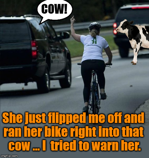 In my defense I did yell COW! |  COW! She just flipped me off and  ran her bike right into that  cow ... I  tried to warn her. | image tagged in funny meme,bikers,angry woman,warning | made w/ Imgflip meme maker