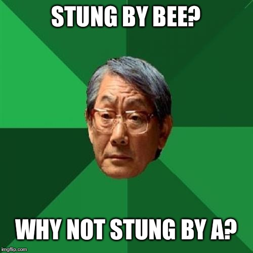 BEEcause There Were No A's In The Area |  STUNG BY BEE? WHY NOT STUNG BY A? | image tagged in memes,high expectations asian father,grades,bees,school | made w/ Imgflip meme maker