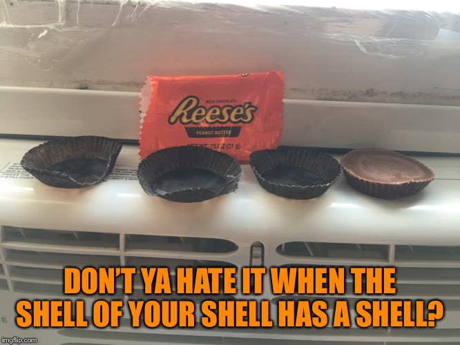 Triple Trouble |  DON'T YA HATE IT WHEN THE SHELL OF YOUR SHELL HAS A SHELL? | image tagged in reese's,candy,trouble,shell | made w/ Imgflip meme maker