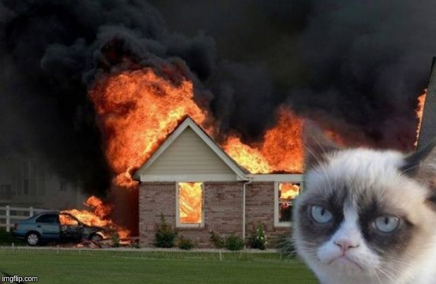 image tagged in memes,burn kitty,grumpy cat | made w/ Imgflip meme maker