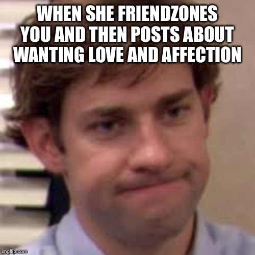 WHEN SHE FRIENDZONES YOU AND THEN POSTS ABOUT WANTING LOVE AND AFFECTION | image tagged in friendzone,the office | made w/ Imgflip meme maker