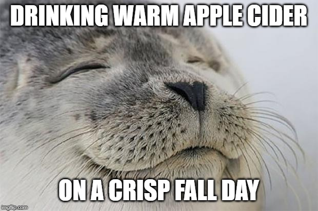 Satisfied Seal |  DRINKING WARM APPLE CIDER; ON A CRISP FALL DAY | image tagged in memes,satisfied seal | made w/ Imgflip meme maker