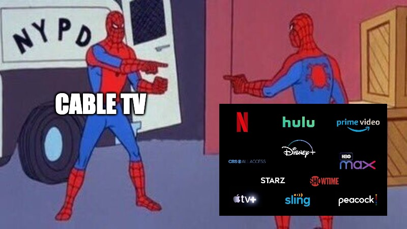 spiderman pointing at spiderman | CABLE TV | image tagged in spiderman pointing at spiderman | made w/ Imgflip meme maker