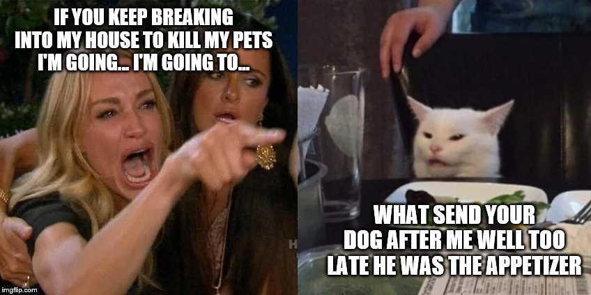 two girls cat zeeks | IF YOU KEEP BREAKING INTO MY HOUSE TO KILL MY PETS I'M GOING... I'M GOING TO... WHAT SEND YOUR DOG AFTER ME WELL TOO LATE HE WAS THE APPETIZ | image tagged in two girls cat zeeks | made w/ Imgflip meme maker