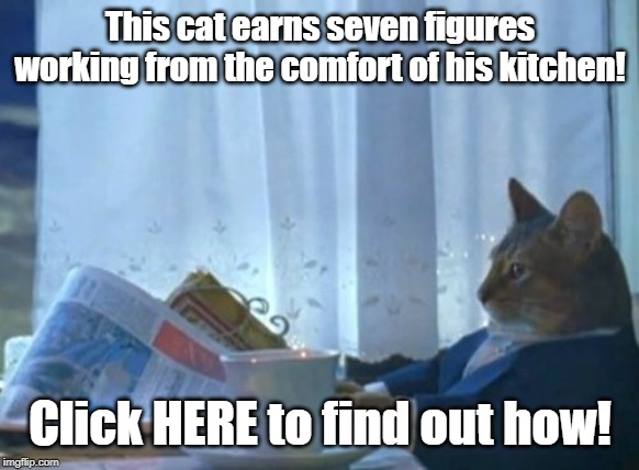 There's nothing to click. | This cat earns seven figures working from the comfort of his kitchen! Click HERE to find out how! | image tagged in memes,i should buy a boat cat | made w/ Imgflip meme maker