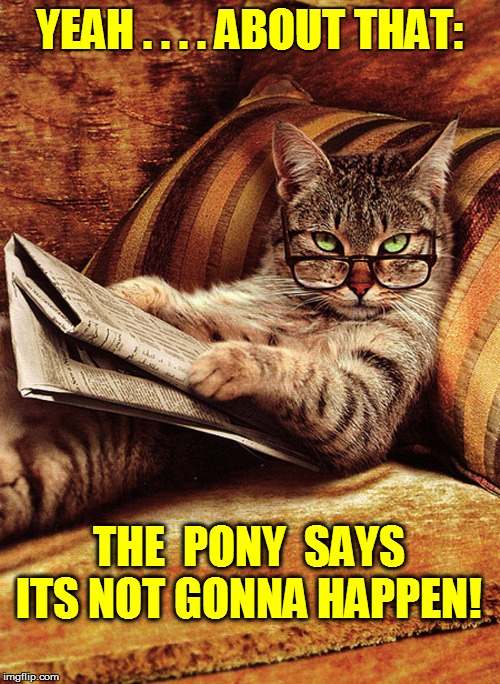 YEAH . . . . ABOUT THAT: THE  PONY  SAYS ITS NOT GONNA HAPPEN! | made w/ Imgflip meme maker