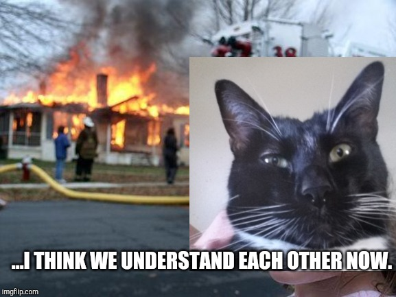 Milo's Revenge | ...I THINK WE UNDERSTAND EACH OTHER NOW. | image tagged in cats,fire,choices,intimidation,mob cats | made w/ Imgflip meme maker