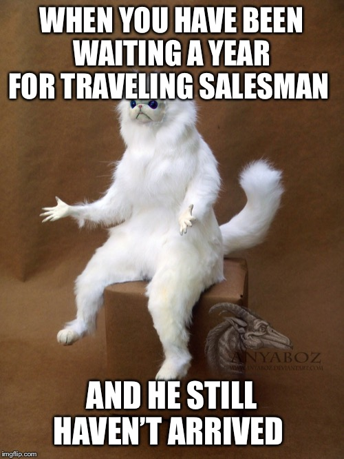 Persian Cat Room Guardian Single | WHEN YOU HAVE BEEN WAITING A YEAR FOR TRAVELING SALESMAN AND HE STILL HAVEN'T ARRIVED | image tagged in memes,persian cat room guardian single | made w/ Imgflip meme maker