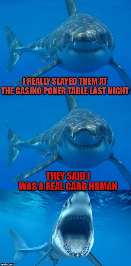 Card Shark |  I REALLY SLAYED THEM AT THE CASINO POKER TABLE LAST NIGHT; THEY SAID I WAS A REAL CARD HUMAN | image tagged in bad shark pun,memes,dashhopes,jaws,poker face | made w/ Imgflip meme maker