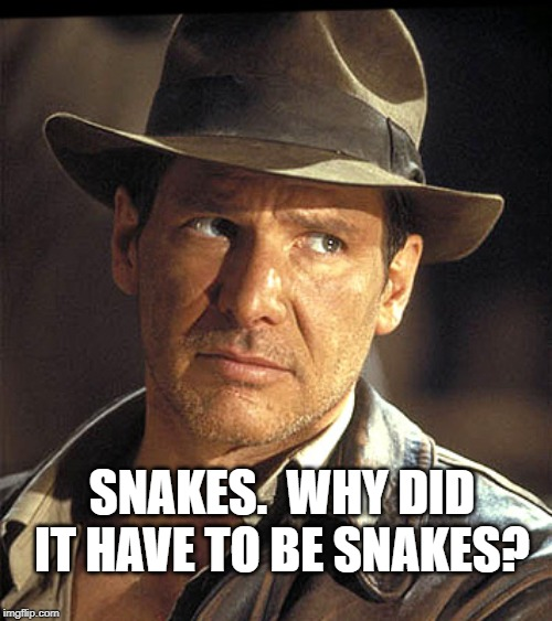 Indiana jones | SNAKES.  WHY DID IT HAVE TO BE SNAKES? | image tagged in indiana jones | made w/ Imgflip meme maker