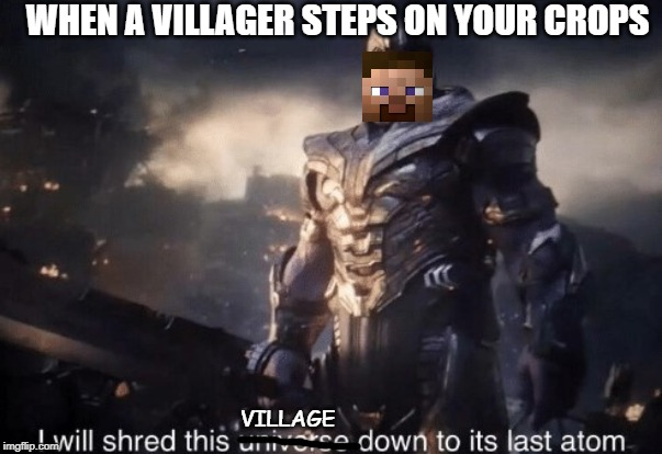 I will shred this universe down to its last atom | WHEN A VILLAGER STEPS ON YOUR CROPS VILLAGE | image tagged in i will shred this universe down to its last atom,minecraft,steve,villager,crops,avengers | made w/ Imgflip meme maker