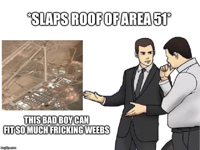 Car Salesman Slaps Hood | *SLAPS ROOF OF AREA 51* THIS BAD BOY CAN FIT SO MUCH FRICKING WEEBS | image tagged in memes,car salesman slaps hood | made w/ Imgflip meme maker