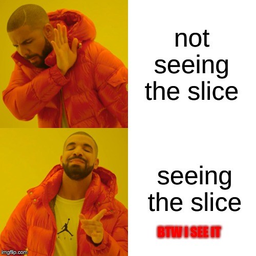 not seeing the slice seeing the slice BTW I SEE IT | image tagged in memes,drake hotline bling | made w/ Imgflip meme maker
