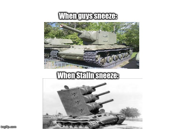 Sneeze comparison #3 | When Stalin sneeze: When guys sneeze: | image tagged in blank white template,funny,memes,sneeze,ww2 | made w/ Imgflip meme maker
