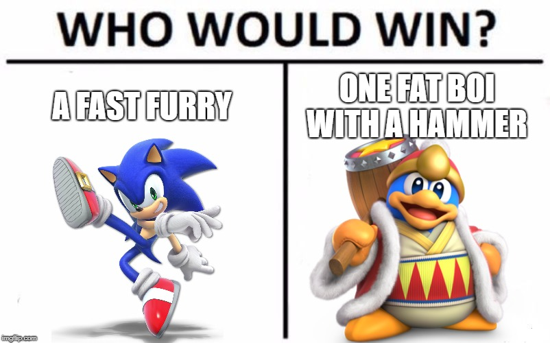 Who Would Win? Meme | A FAST FURRY ONE FAT BOI WITH A HAMMER | image tagged in memes,who would win,sonic the hedgehog,king dedede,super smash bros,kirby | made w/ Imgflip meme maker