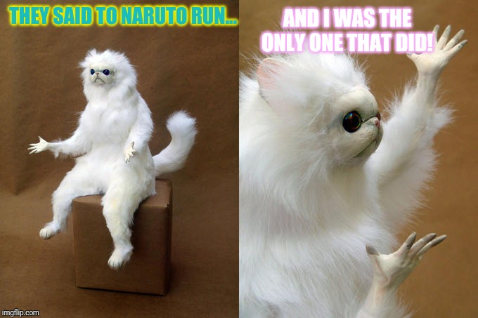 Persian Cat Room Guardian | THEY SAID TO NARUTO RUN... AND I WAS THE ONLY ONE THAT DID! | image tagged in memes,persian cat room guardian | made w/ Imgflip meme maker