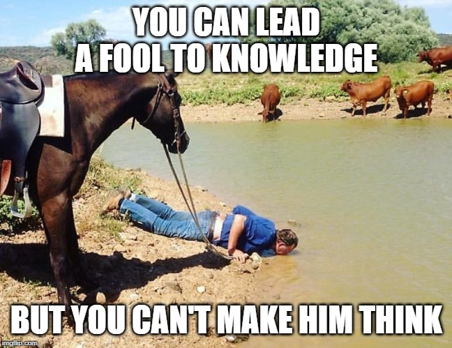 Think before you drink! | YOU CAN LEAD A FOOL TO KNOWLEDGE BUT YOU CAN'T MAKE HIM THINK | image tagged in think about it,horse,fool | made w/ Imgflip meme maker