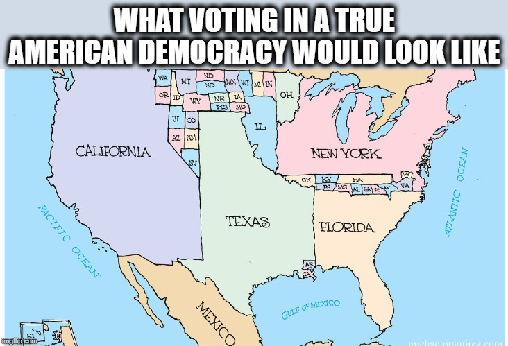 No more electoral college, support democracy. | WHAT VOTING IN A TRUE AMERICAN DEMOCRACY WOULD LOOK LIKE | image tagged in memes,politics,electoral college,maga | made w/ Imgflip meme maker