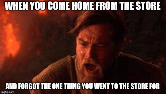 You Were The Chosen One (Star Wars) |  WHEN YOU COME HOME FROM THE STORE; AND FORGOT THE ONE THING YOU WENT TO THE STORE FOR | image tagged in memes,you were the chosen one star wars | made w/ Imgflip meme maker