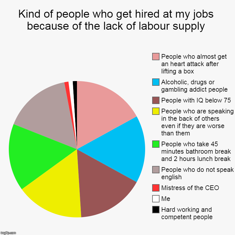 Kind of people who get hired at my jobs because of the lack of labour supply | Hard working and competent people, Me, Mistress of the CEO, P | image tagged in pie charts,incompetence,dumb,lazy,drug addiction | made w/ Imgflip chart maker