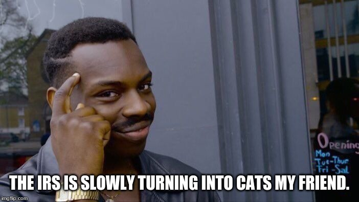 Roll Safe Think About It Meme | THE IRS IS SLOWLY TURNING INTO CATS MY FRIEND. | image tagged in memes,roll safe think about it | made w/ Imgflip meme maker