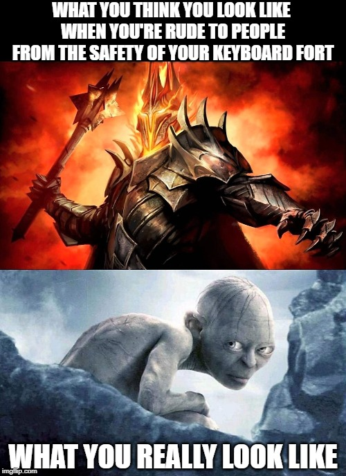 Not So Precious Now | WHAT YOU THINK YOU LOOK LIKE  WHEN YOU'RE RUDE TO PEOPLE FROM THE SAFETY OF YOUR KEYBOARD FORT WHAT YOU REALLY LOOK LIKE | image tagged in what you think you look like,funny memes,smeagol,sauron,lotr,internet trolls | made w/ Imgflip meme maker