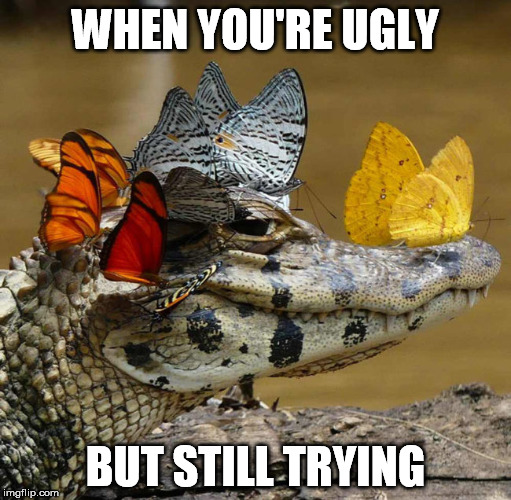 WHEN YOU'RE UGLY BUT STILL TRYING | image tagged in ugly,trying,effort,attractive | made w/ Imgflip meme maker